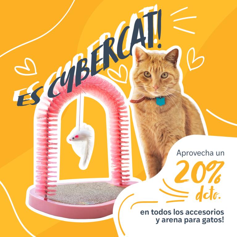 Campaña CyberCat - Arena para Mascotas