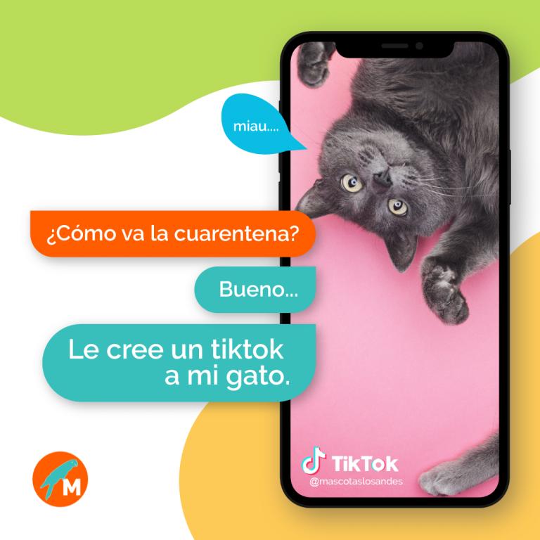 TikTok - Mascotas Los Andes